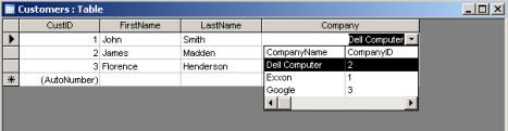 Lookup Field Datasheet - 2 Columns